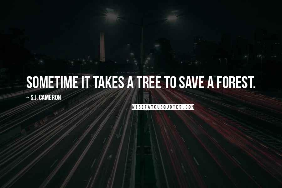 S.J. Cameron quotes: Sometime it takes a Tree to save a forest.