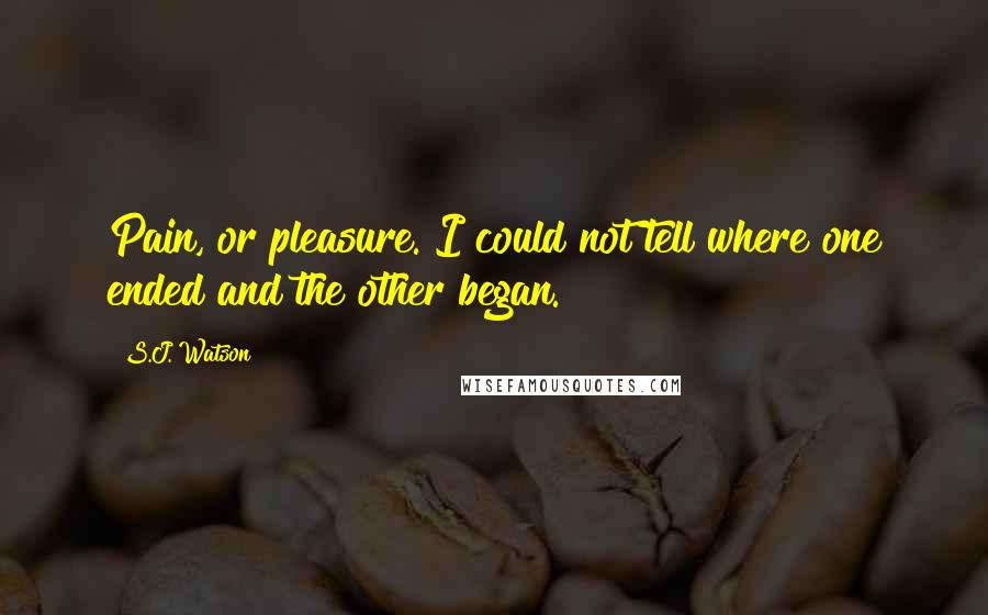 S.J. Watson quotes: Pain, or pleasure. I could not tell where one ended and the other began.