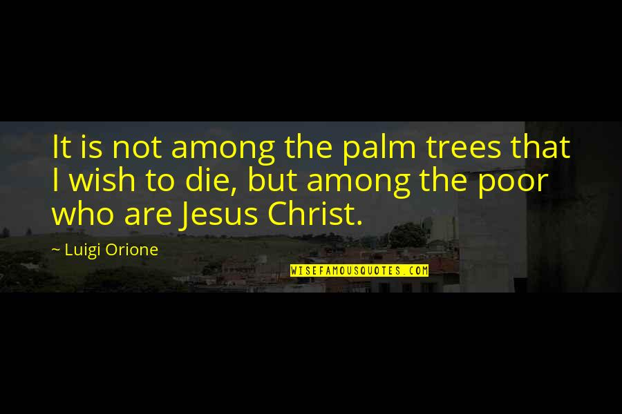 Sacramentally Quotes By Luigi Orione: It is not among the palm trees that