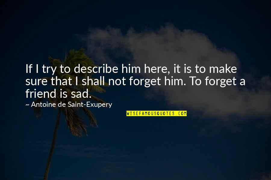 Sad Best Friend Quotes By Antoine De Saint-Exupery: If I try to describe him here, it