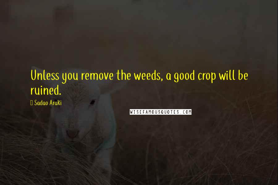 Sadao Araki quotes: Unless you remove the weeds, a good crop will be ruined.