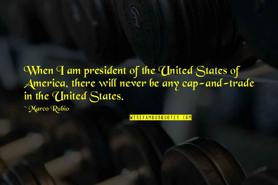 Safeguard Dental Quotes By Marco Rubio: When I am president of the United States