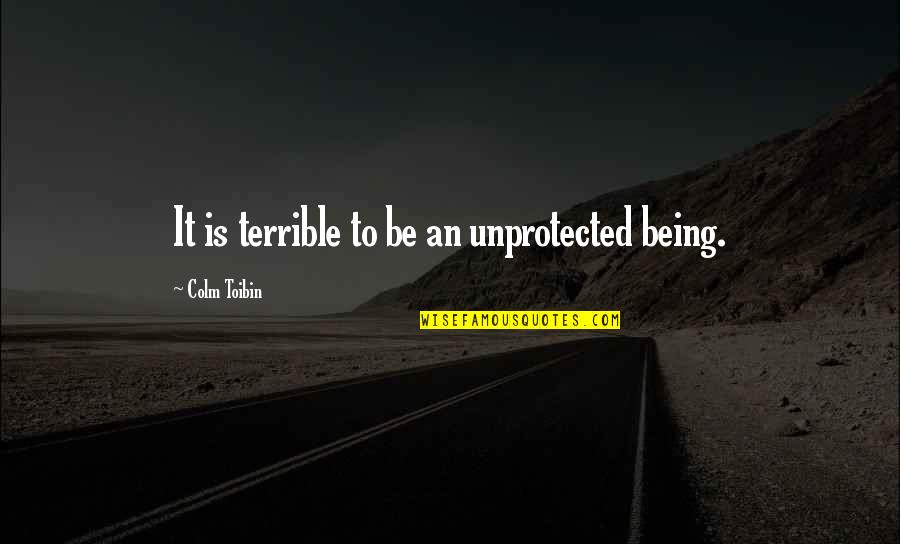 Safety And Protection Quotes By Colm Toibin: It is terrible to be an unprotected being.
