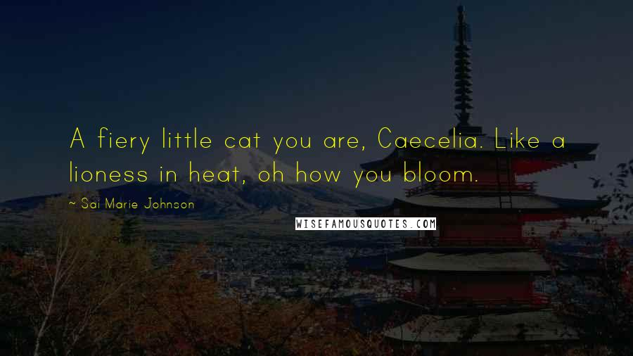 Sai Marie Johnson quotes: A fiery little cat you are, Caecelia. Like a lioness in heat, oh how you bloom.