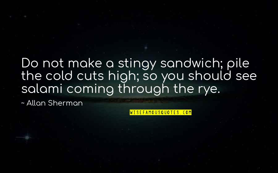 Salami Quotes By Allan Sherman: Do not make a stingy sandwich; pile the