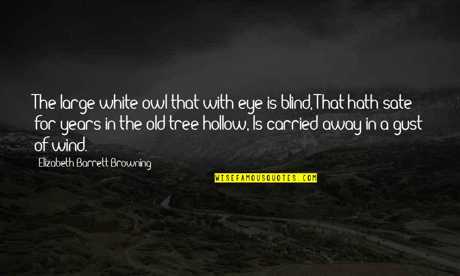 Salpetriere Quotes By Elizabeth Barrett Browning: The large white owl that with eye is