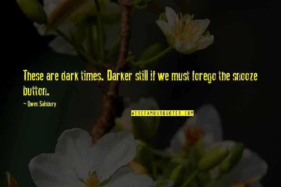 Salsbury Quotes By Qwen Salsbury: These are dark times. Darker still if we