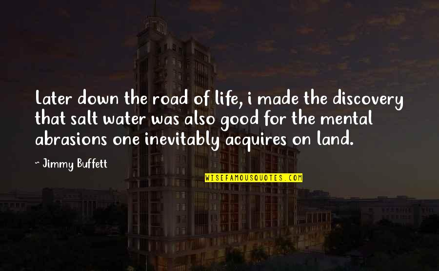 Salt Water Quotes By Jimmy Buffett: Later down the road of life, i made