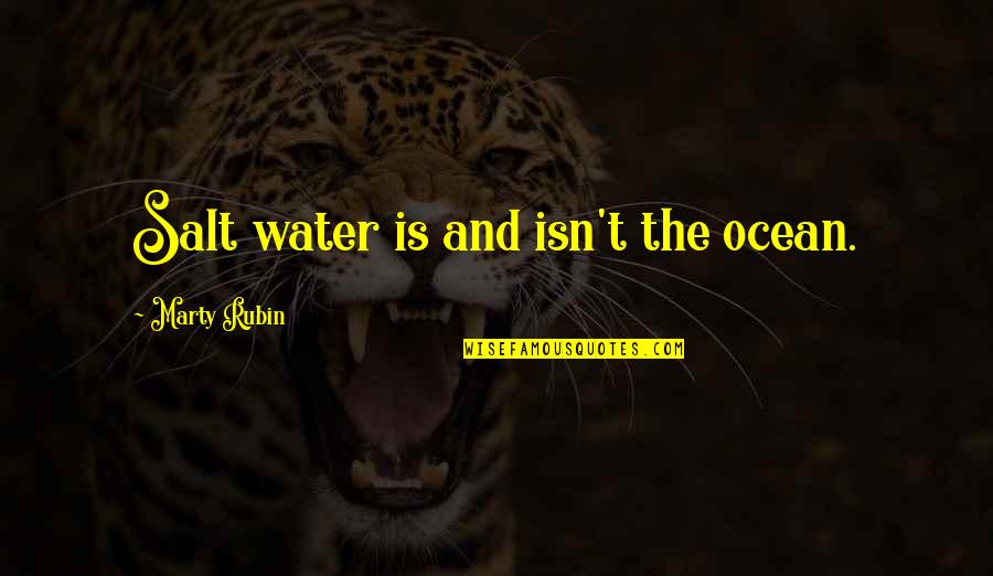Salt Water Quotes By Marty Rubin: Salt water is and isn't the ocean.