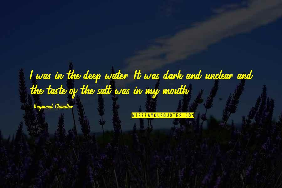 Salt Water Quotes By Raymond Chandler: I was in the deep water. It was