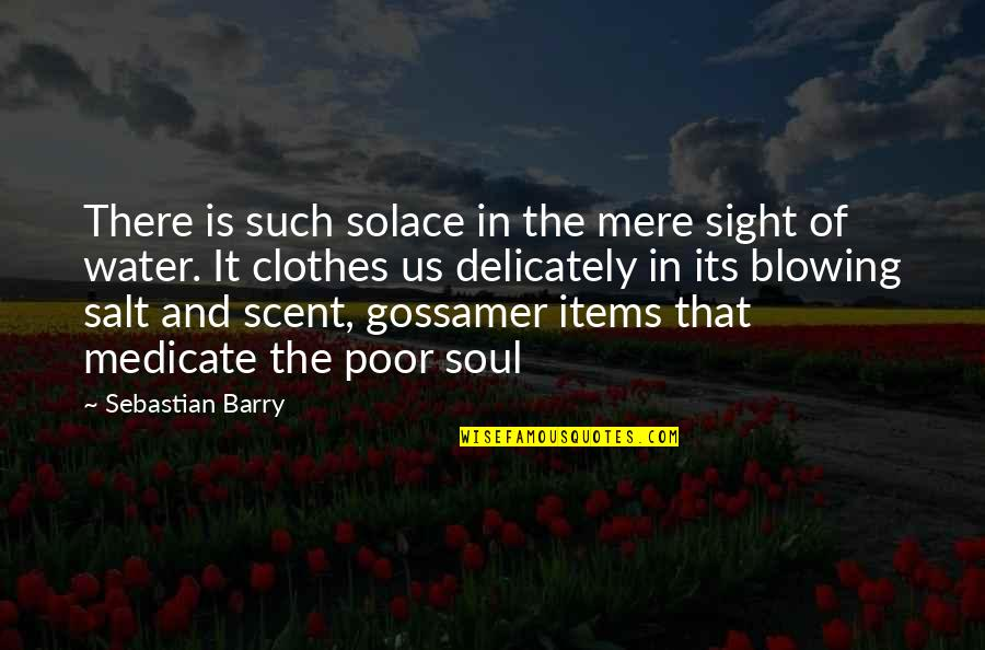 Salt Water Quotes By Sebastian Barry: There is such solace in the mere sight