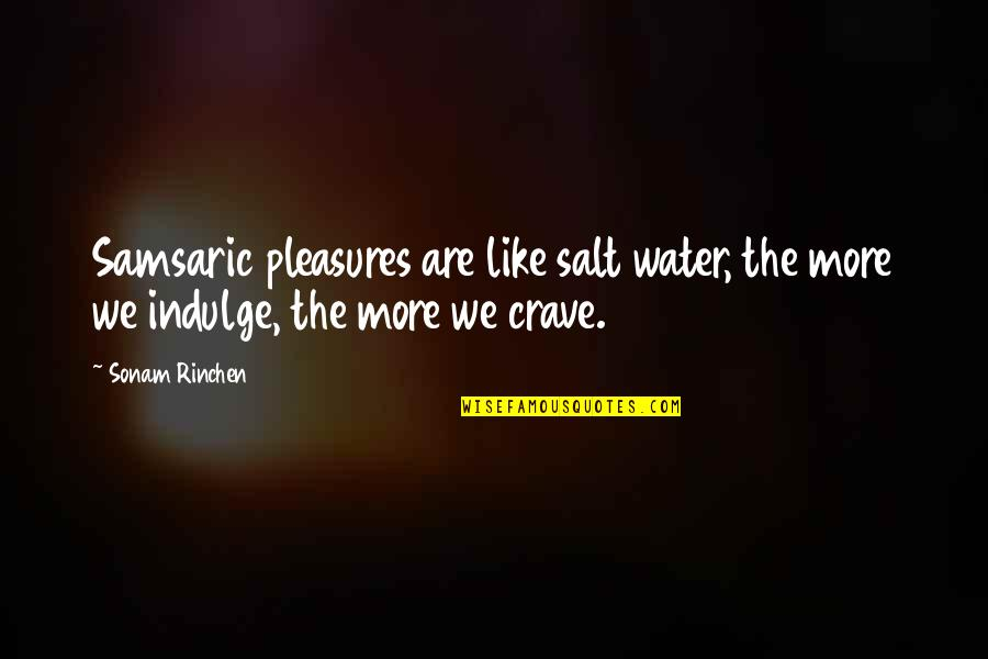 Salt Water Quotes By Sonam Rinchen: Samsaric pleasures are like salt water, the more
