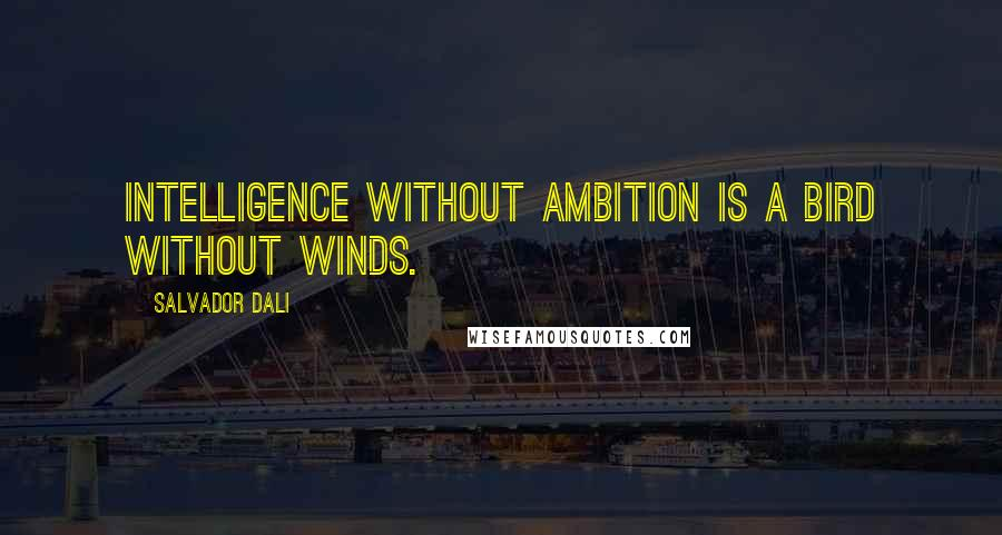 Salvador Dali quotes: Intelligence without ambition is a bird without winds.