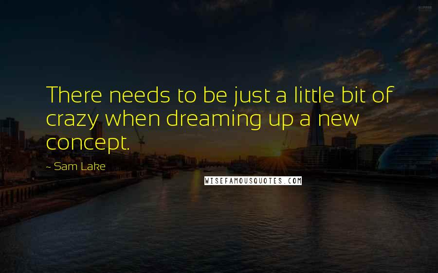 Sam Lake quotes: There needs to be just a little bit of crazy when dreaming up a new concept.