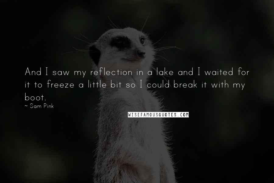 Sam Pink quotes: And I saw my reflection in a lake and I waited for it to freeze a little bit so I could break it with my boot.