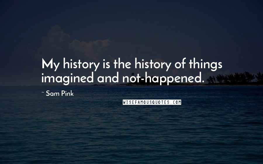 Sam Pink quotes: My history is the history of things imagined and not-happened.