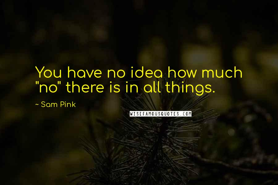 "Sam Pink quotes: You have no idea how much ""no"" there is in all things."