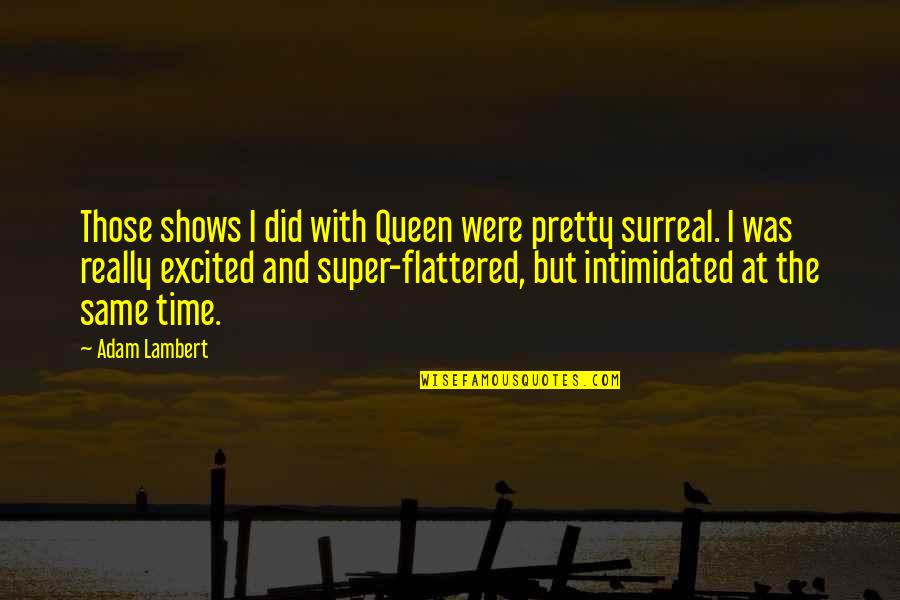 Same Time Quotes By Adam Lambert: Those shows I did with Queen were pretty