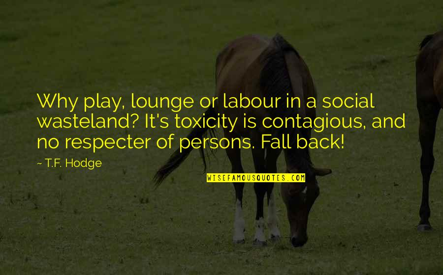 Samuel Adams Anti Federalist Quotes By T.F. Hodge: Why play, lounge or labour in a social