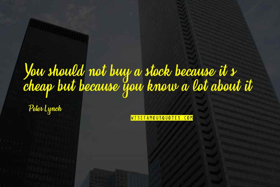 Sanam Saeed Quotes By Peter Lynch: You should not buy a stock because it's