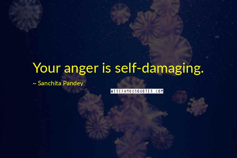 Sanchita Pandey quotes: Your anger is self-damaging.