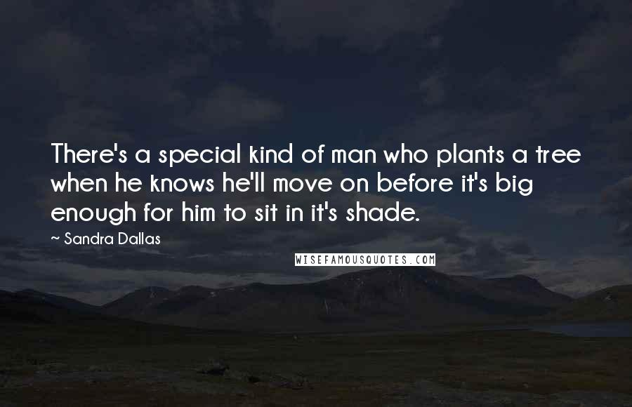 Sandra Dallas quotes: There's a special kind of man who plants a tree when he knows he'll move on before it's big enough for him to sit in it's shade.