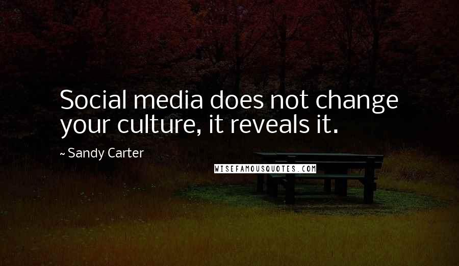 Sandy Carter quotes: Social media does not change your culture, it reveals it.