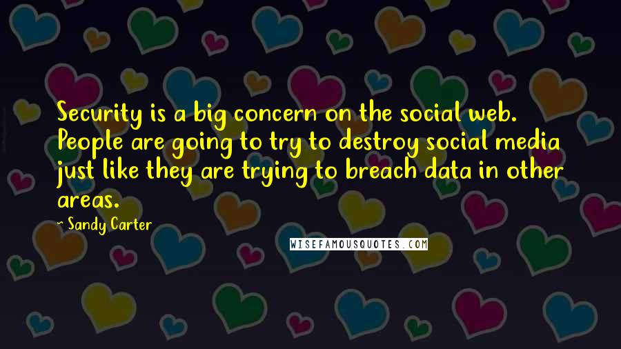 Sandy Carter quotes: Security is a big concern on the social web. People are going to try to destroy social media just like they are trying to breach data in other areas.