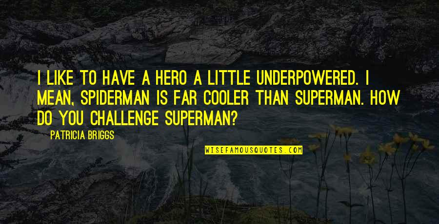 Santiago Munez Quotes By Patricia Briggs: I like to have a hero a little
