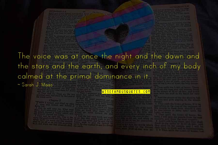 Sarah J Maas Quotes By Sarah J. Maas: The voice was at once the night and
