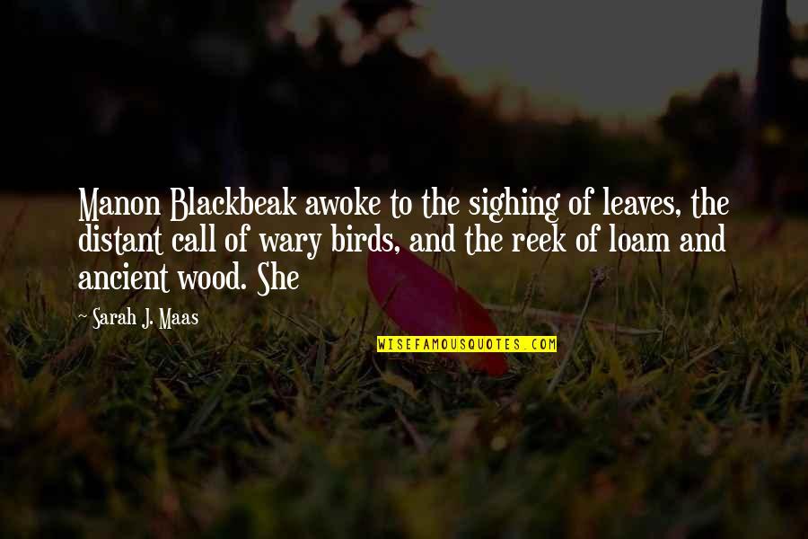 Sarah J Maas Quotes By Sarah J. Maas: Manon Blackbeak awoke to the sighing of leaves,