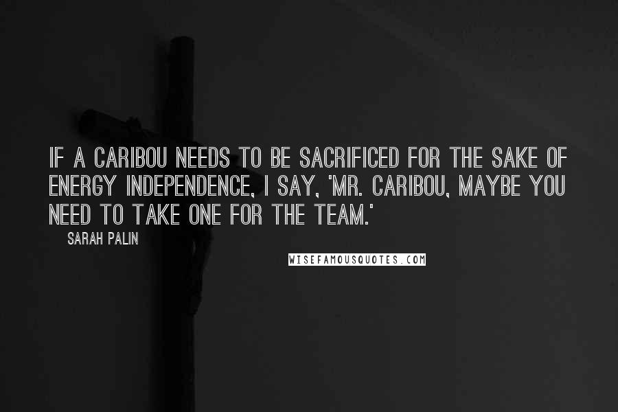 Sarah Palin quotes: If a caribou needs to be sacrificed for the sake of energy independence, I say, 'Mr. Caribou, maybe you need to take one for the team.'