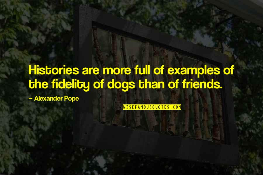 Sarcastic Cute Quotes By Alexander Pope: Histories are more full of examples of the
