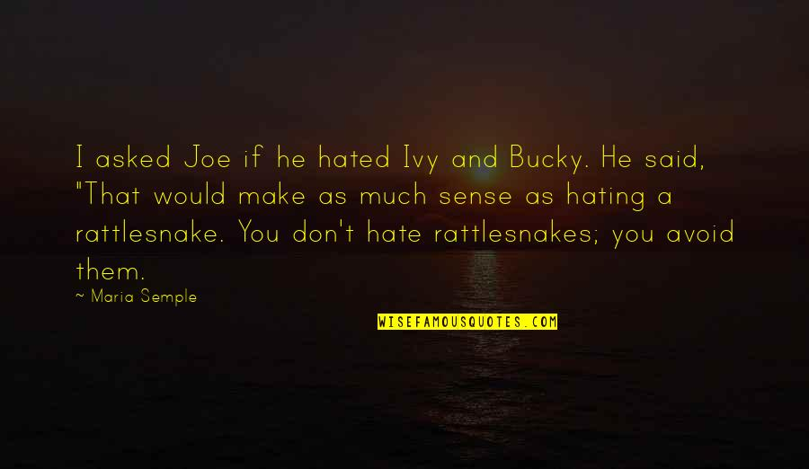 Sassoons Quotes By Maria Semple: I asked Joe if he hated Ivy and