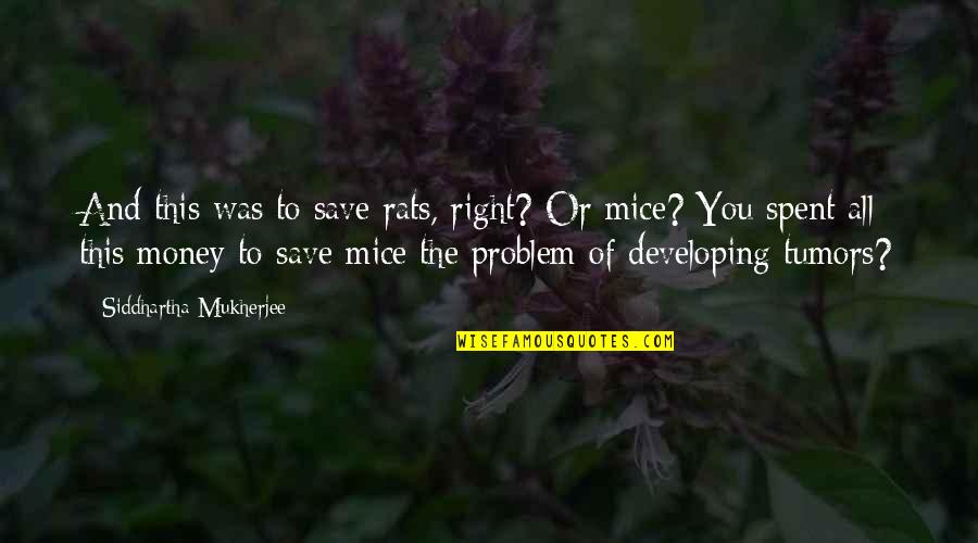 Sasuke's Quotes By Siddhartha Mukherjee: And this was to save rats, right? Or