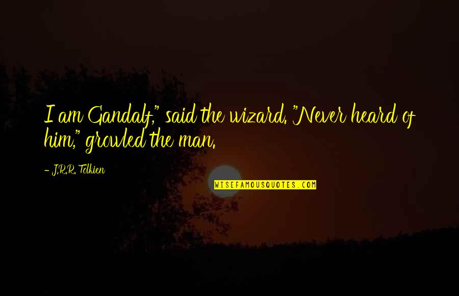 """Satisfaction God Quotes By J.R.R. Tolkien: I am Gandalf,"""" said the wizard. """"Never heard"""