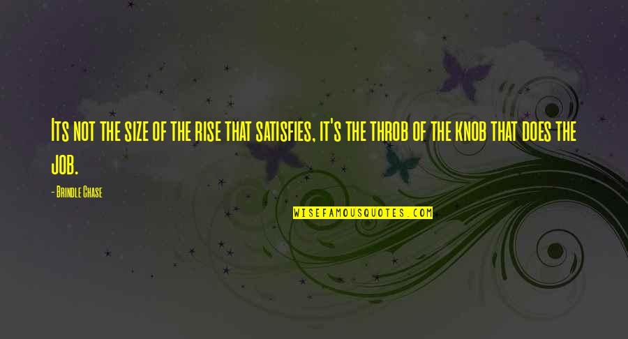 Satisfies Quotes By Brindle Chase: Its not the size of the rise that