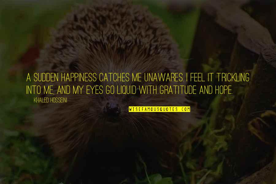 Sauga Quotes By Khaled Hosseini: A sudden happiness catches me unawares. I feel