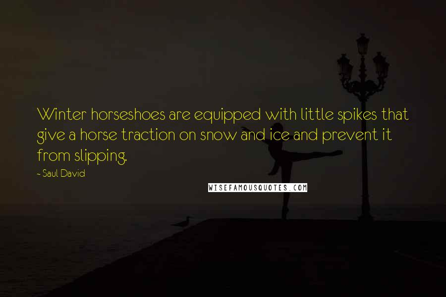 Saul David quotes: Winter horseshoes are equipped with little spikes that give a horse traction on snow and ice and prevent it from slipping.