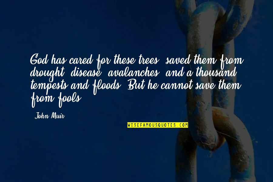Save Nature Quotes By John Muir: God has cared for these trees, saved them