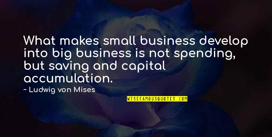 Scarlet Letter Symbols Quotes By Ludwig Von Mises: What makes small business develop into big business
