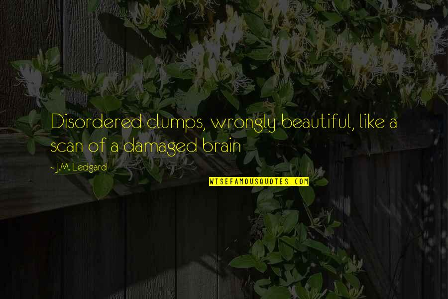 Scary Gravestone Quotes By J.M. Ledgard: Disordered clumps, wrongly beautiful, like a scan of