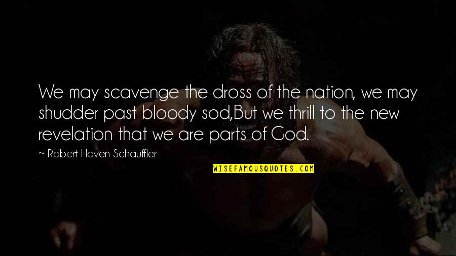 Scavenge Quotes By Robert Haven Schauffler: We may scavenge the dross of the nation,