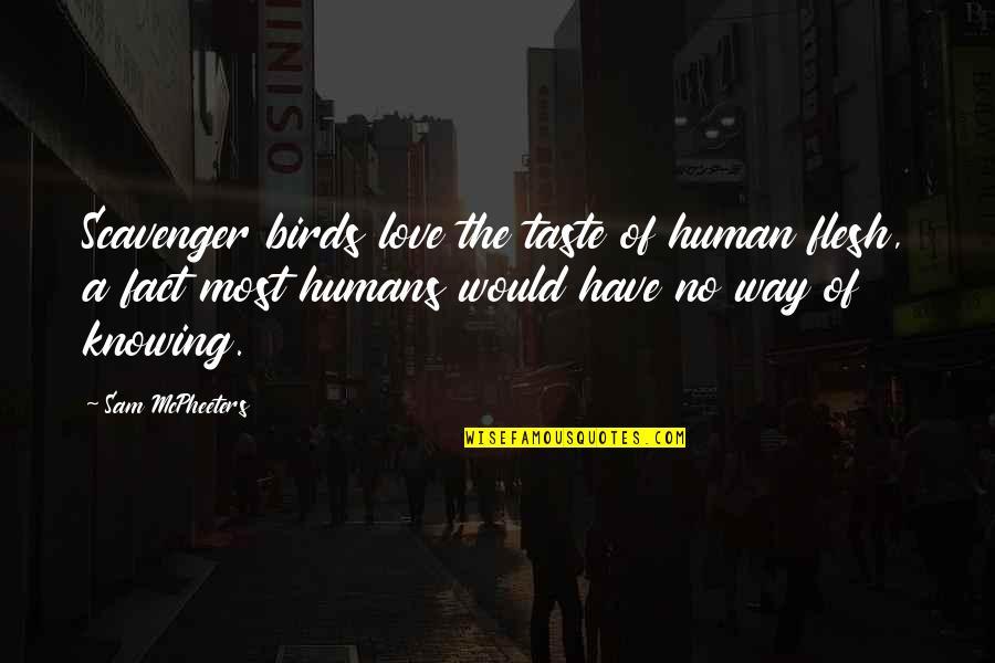Scavenger Quotes By Sam McPheeters: Scavenger birds love the taste of human flesh,