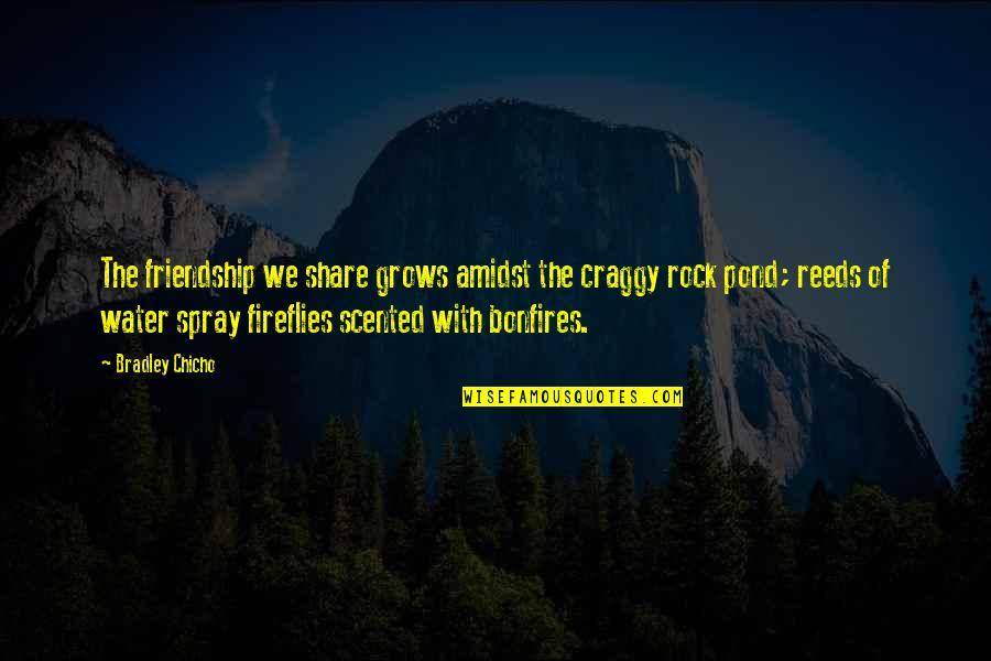 Scented Quotes By Bradley Chicho: The friendship we share grows amidst the craggy