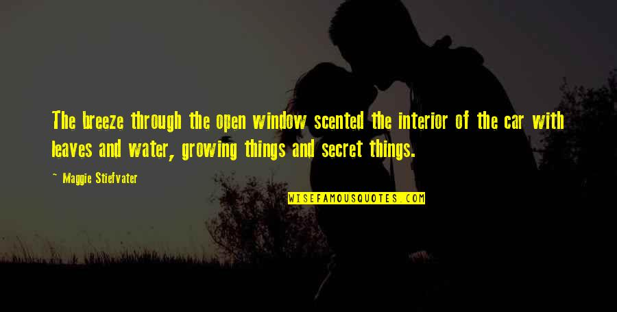 Scented Quotes By Maggie Stiefvater: The breeze through the open window scented the
