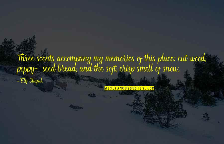 Scents And Memories Quotes By Elif Shafak: Three scents accompany my memories of this place: