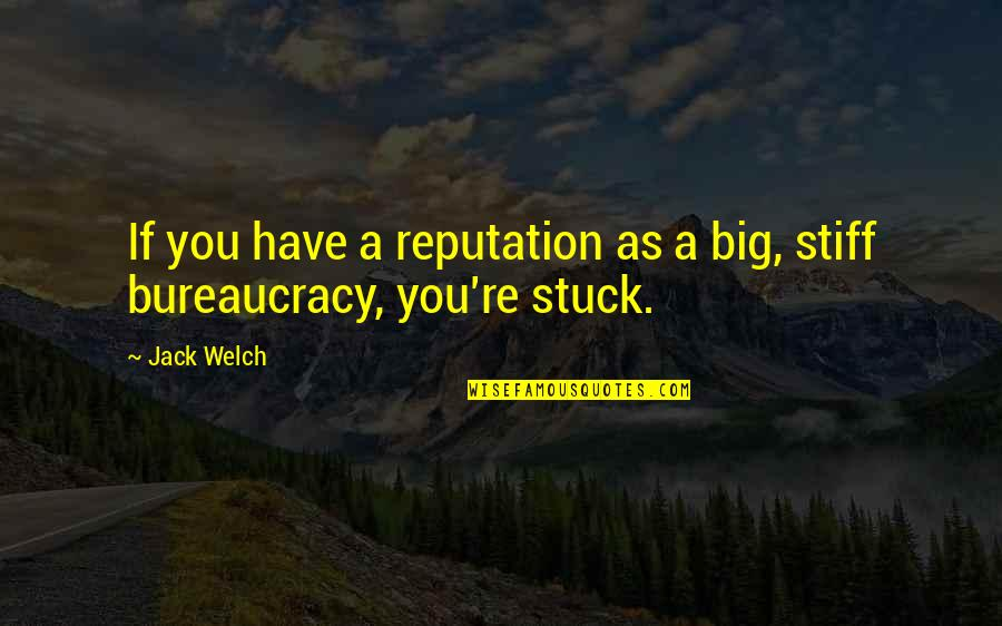 School Awards Quotes By Jack Welch: If you have a reputation as a big,