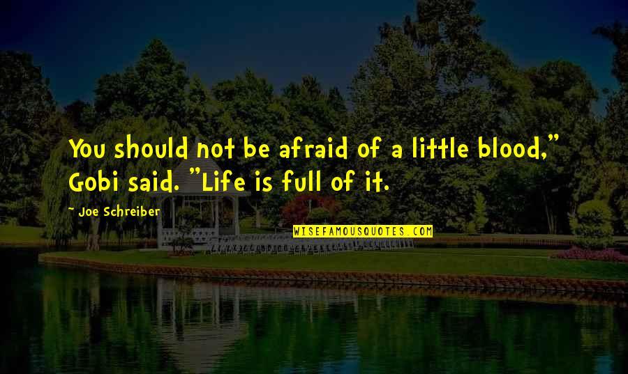 Schreiber Quotes By Joe Schreiber: You should not be afraid of a little