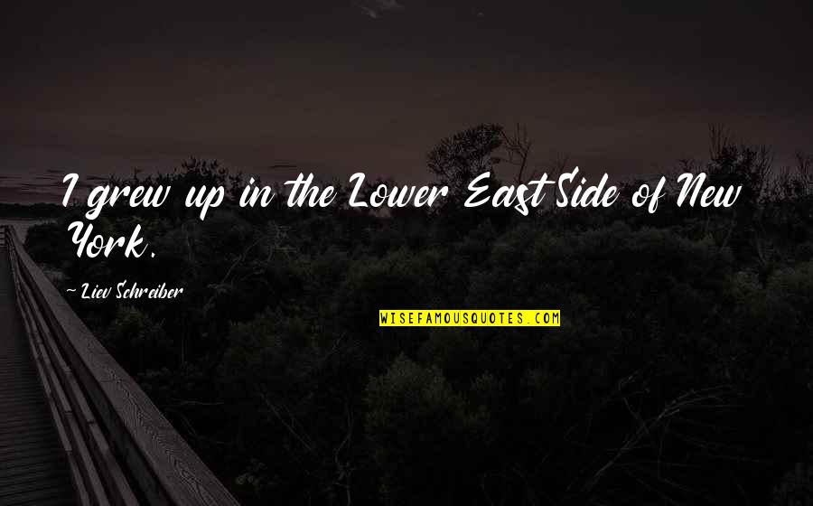 Schreiber Quotes By Liev Schreiber: I grew up in the Lower East Side